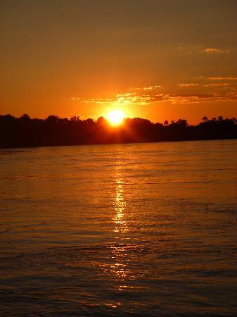 Zambezi River: ◇ 灯 ◇