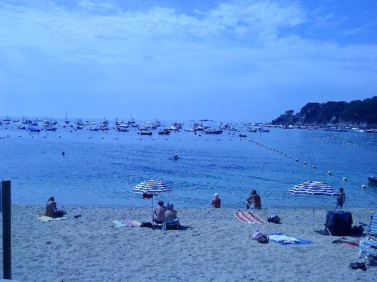 Hotel Alga: La plage