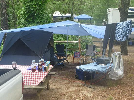 Sweetwater Forest Campground : Camp Ground