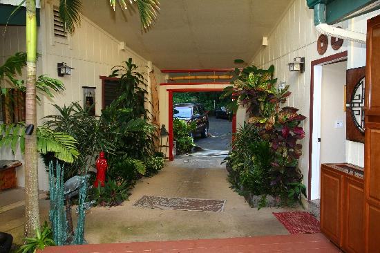 Honu Kai B&B : Entrance Area