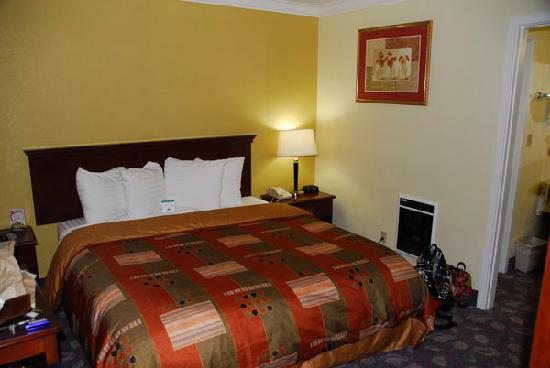 BEST WESTERN Park Crest Inn: King suite