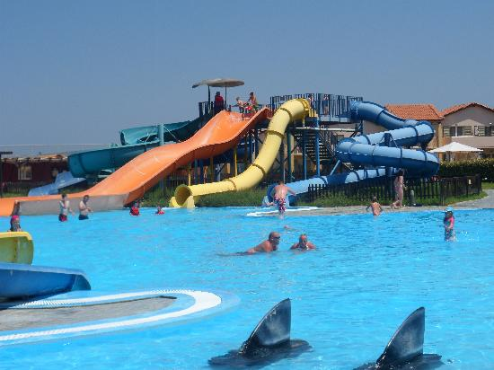Marine Aquapark Resort: Slide Pool