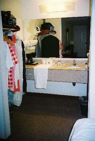 Garden State Inn: Sink Area