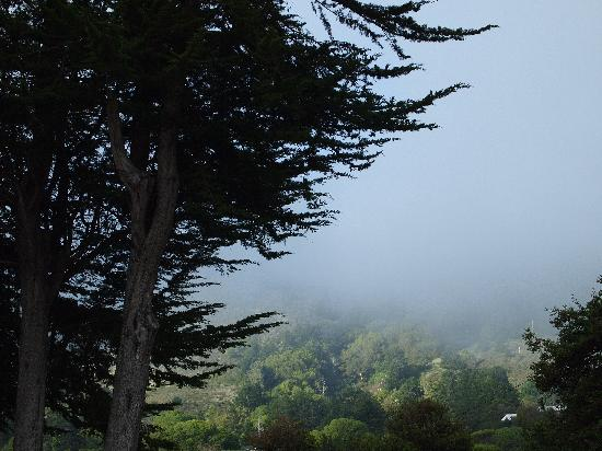 Sandpiper Inn: Driving above Stinson