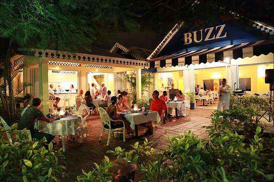 buzz seafood and grill