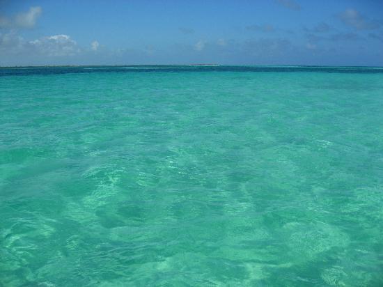 Piscine naturelle de sian kaan picture of les tours de mimi playa del carmen tripadvisor - Picine naturelle ...