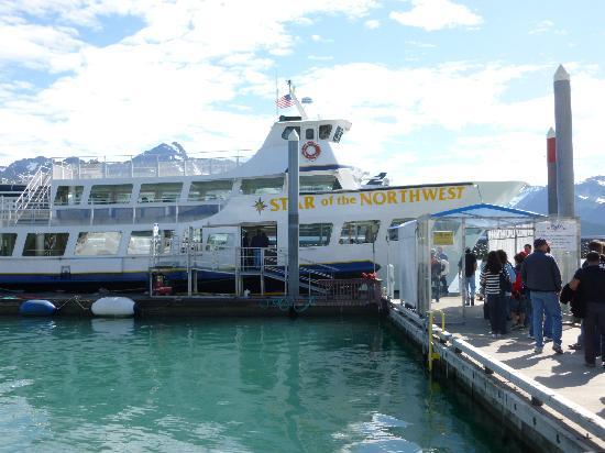 Major Marine Tours Seward Reviews