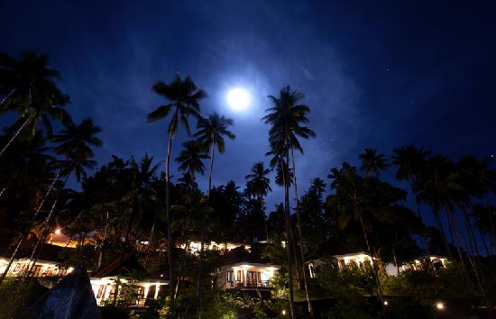 DABIRAHE Dive, Spa and Leisure Resort (Lembeh): Night View