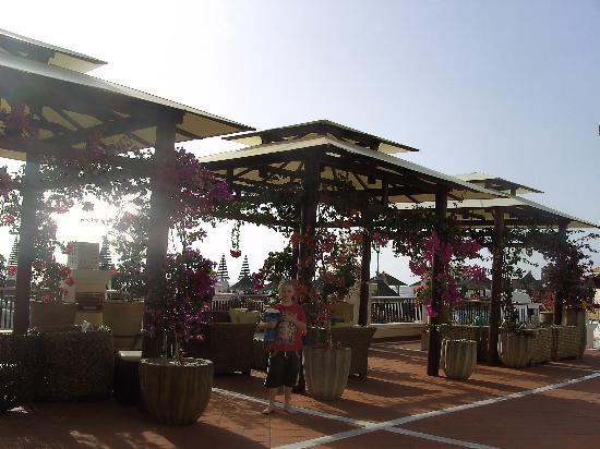 Flamingo Beach Mate: hotels balcony