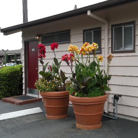 Best Western Plus Garden Inn: Flower Urns outside the Cabins