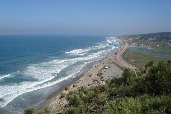 Torrey Pines State Natural Reserve: View from top of cliff