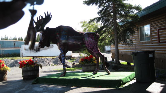 Caribou Hotel: The welcoming moose!