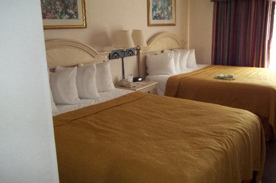 Quality Suites Lake Buena Vista: Great Beds