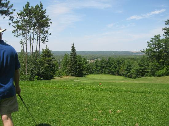 Pine View Golf and Country Club: Great View!