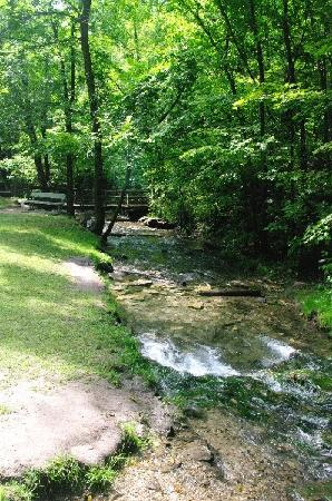 Decorah, IA: Dunnings Spring Park