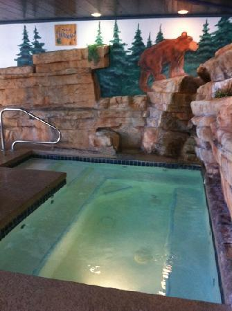 Stoney Creek Hotel & Conference Center  - Columbia: Clean Hottub