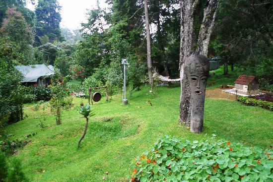 The Fern Creek : Garden