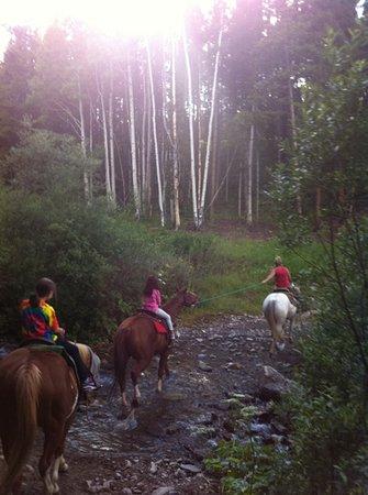 Arkansas Valley Adventures: this we enjoyed
