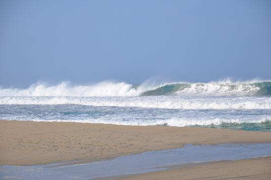 Playa Zicatela: playa