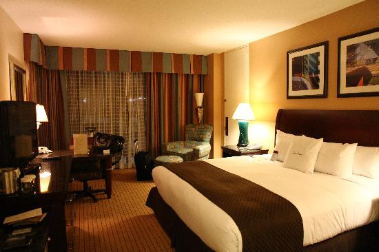 Doubletree Hotel Houston Downtown: Room 904