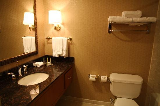 Doubletree Hotel Houston Downtown: Bathroom