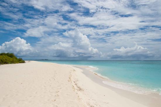 Palm Beach Resort & Spa Maldives: palm beach 5/11