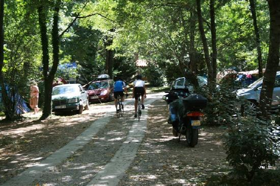 Isis en Cevennes : View at the camping site. The environment is great for bikers!