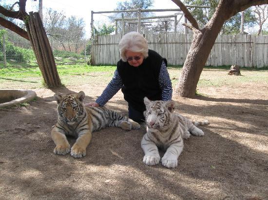 Cango Wildlife Ranch: A dream realised