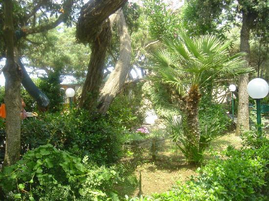 Marina di Castagneto Carducci, อิตาลี: Il giardino dei Ginepri