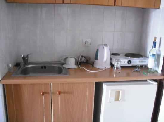 Yannis Aparthotel : Kitchen