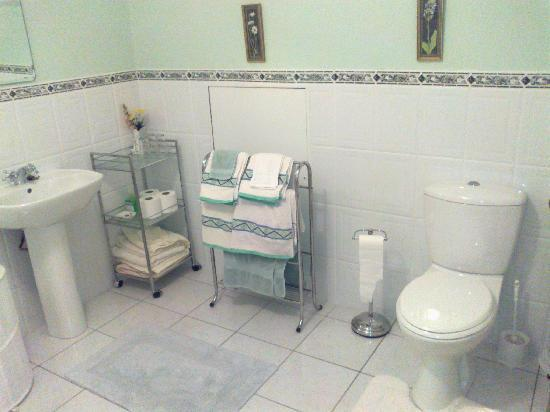 Clunelly House : the toilet