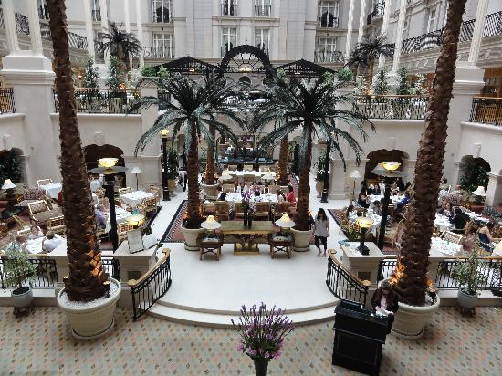 The restaurant picture of the winter garden london - Best restaurants in winter garden ...