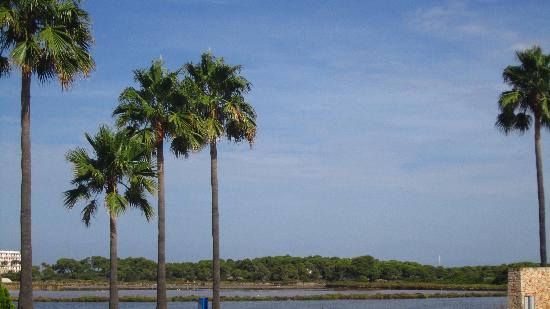 Blau Colonia Sant Jordi Resort & Spa: Blick vom Hoteleingang Richtung Strand