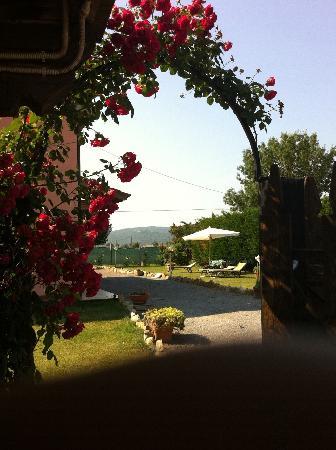 Manciano, Italia: giardino 2