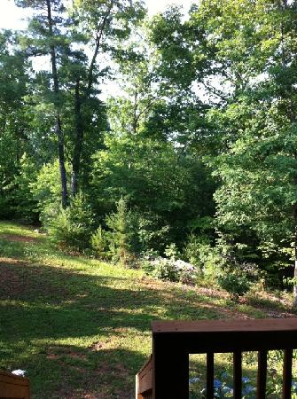 Mountain Laurel Creek Inn & Spa: View from bedroom window