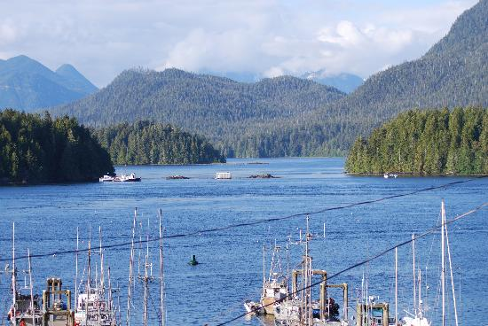 Tofino Inlet Cottages: view from balcony
