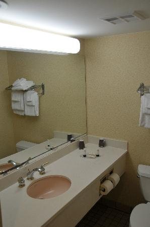 Fairfield Inn & Suites Asheville South/Biltmore Square: Bathroom