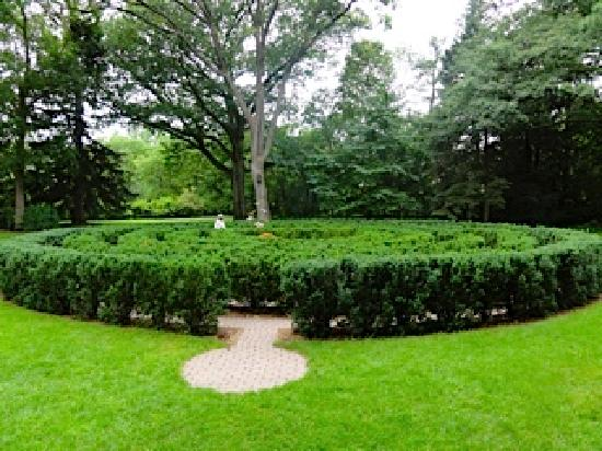 H.H. Dow Maze a favorite spot for the young at heart - Picture of ...