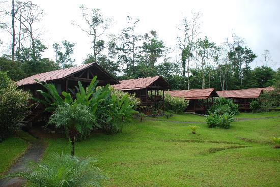 La Anita Rainforest Ranch: the other cabins on the property
