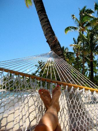 Mauna Lani Bay Hotel & Bungalows: favorite hammock