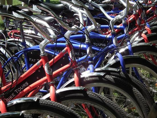 Fat Tire Tours Paris: Billy's Bike Skills