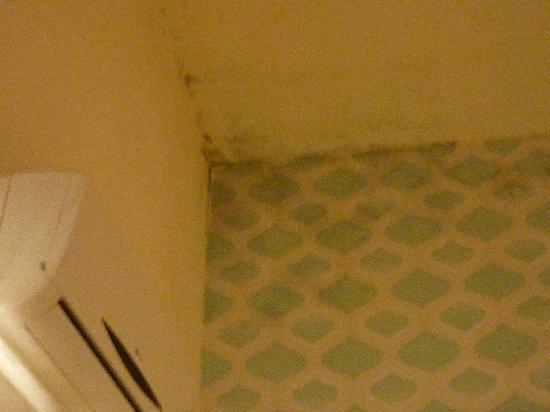 Blue Soho Hotel: Humedad