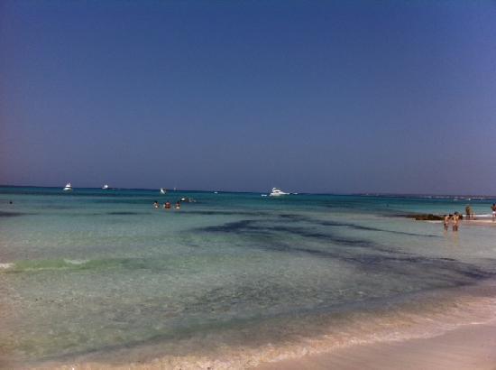 Playa de Es Trenc: der strand