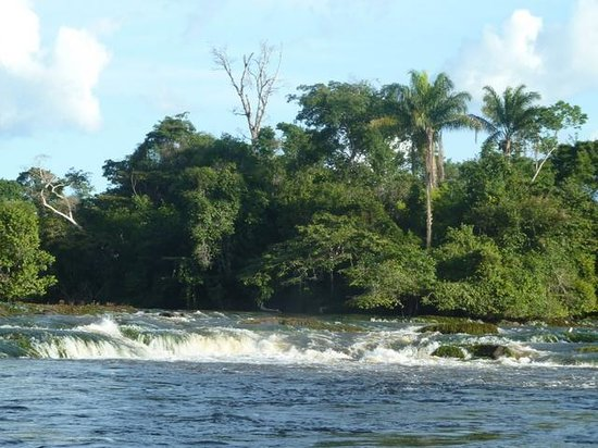 Photo of Awarradam Jungle Lodge Paramaribo