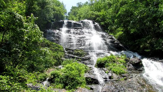 Amicalola Falls State Park: So worth it!