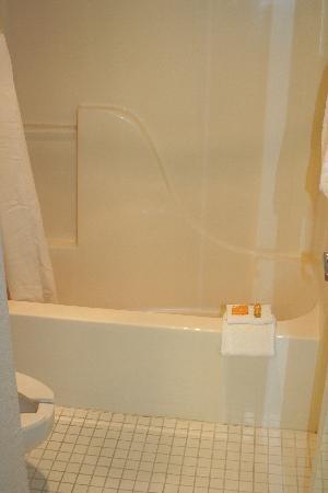 La Quinta Inn & Suites Detroit Utica: Bathroom