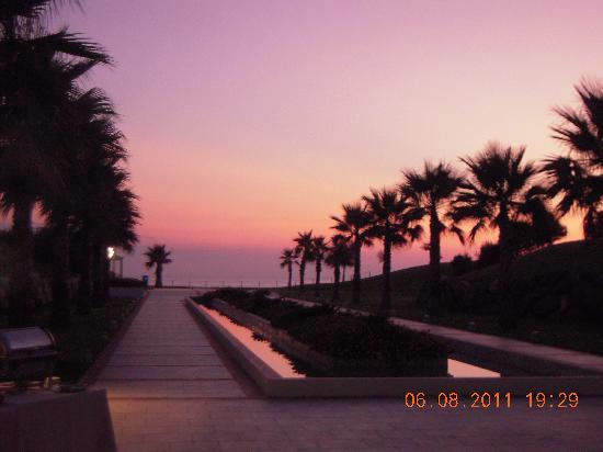 Capovaticano Resort Thalasso&Spa - MGallery by Sofitel: dal ristorante