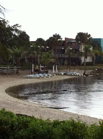 Club Med Sandpiper Bay: the sailing/surf paddling station!