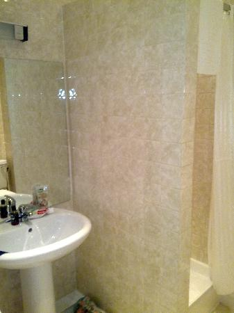 Chudleigh: Shower room