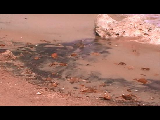 Jungle Aqua Park: petrole et briques